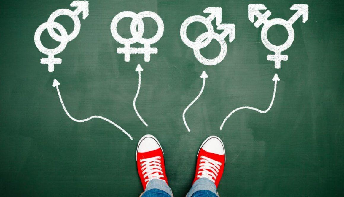 trans-blog